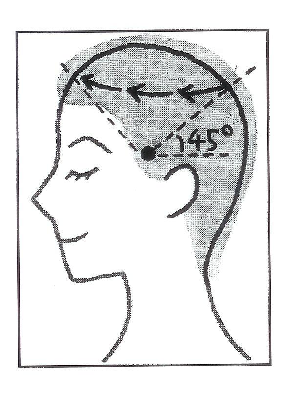 気功論文:頭の気功法(頭の経絡の図)